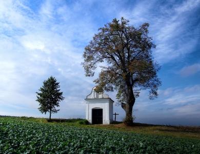 Kaplička Borová (na Konicku u obce Dzbel)