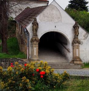 Kokory  - Kostel Nanebevzetí Panny Marie_3